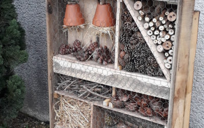 Un abri pour les insectes installé devant l'imprimerie